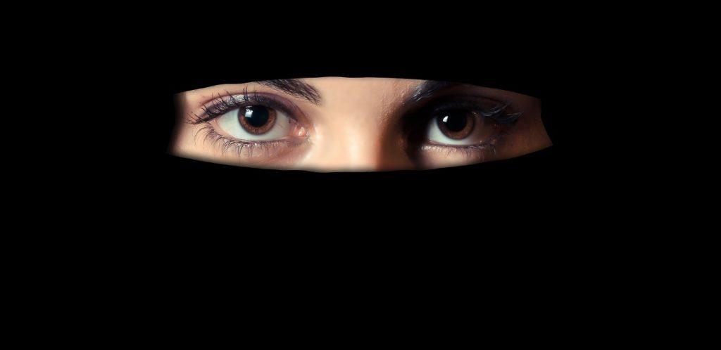 L'agenzia investigativa Octopus svolge indagini internazionali dal 1988, interagendo con culture molto differenti tra loro. È intollerabile come un certo tipo di islam tratti le donne.